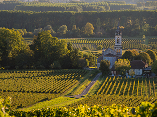 3-must-visit-wine-tours-in-france