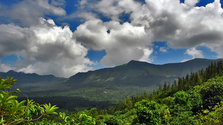 chikmagalur top holiday spots near bangalore