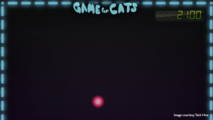 game for cats weirdest app in the world