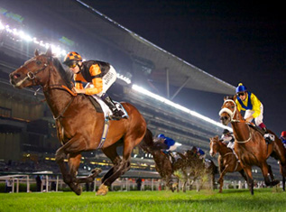 greatest-horse-races-around-the-world