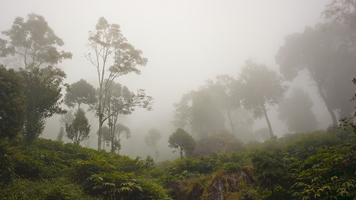 meghamalai best hill stations in south india
