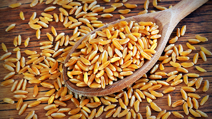 superfood khorasan wheat antioxidants lipid blood profiles