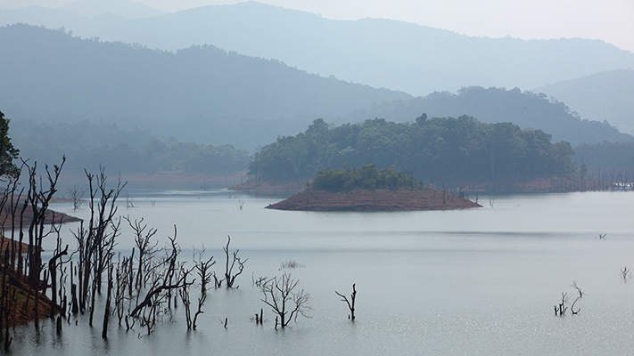 vythiri resort wayanad must visit travel places in south india